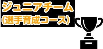ジュニアチーム(選手育成コース)